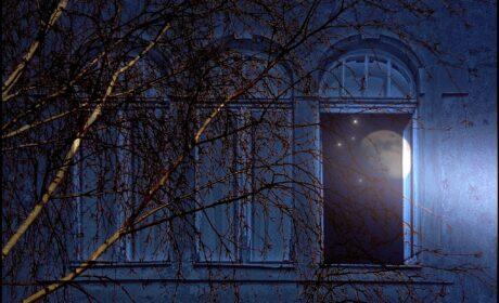 Głosy nocy